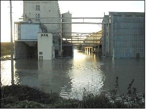 Inondation D'un Entrepôt De Produits Phytosanitaires